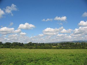 Typical east Limerick landscape, part of the f...