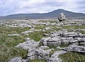 Limestone boulder - geograph.org.uk - 178438.jpg