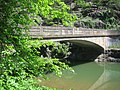 Little Cacapon River Neals Run WV 2005 05 26 11.jpg