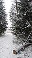 Lobnya, Moscow Oblast, Russia - panoramio (552).jpg