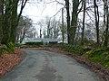 Lon goediog ger Blaenwaun uchaf - Wooded lane near Blaenwaun uchaf - geograph.org.uk - 1090463.jpg