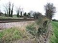 Looking E along the railway line near Sevenscore. - geograph.org.uk - 310569.jpg