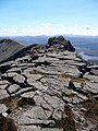 Looking south on Arkle's summit ridge - geograph.org.uk - 829107.jpg