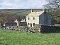 Low Ash Head (ruin) - geograph.org.uk - 612718.jpg