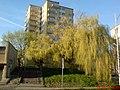 Lublin - Na ulicy Weteranów - panoramio.jpg