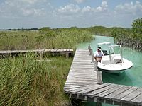 México - Sian Ka'an, Boat Tour.JPG