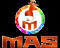 MAS Party Sonora (Mexico).png
