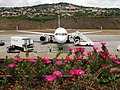 Madeira Airport - June 2008.jpg