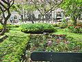 Madeira em Abril de 2011 IMG 1722 (5663180843).jpg
