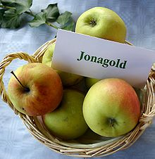 Malus Jonagold Jpg