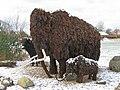 Mammut - Fur Fossiler.jpg