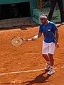 Marcos Baghdatis 2010 Roland Garros 3R.jpg