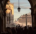 Marcus Place Venice (130120129).jpeg