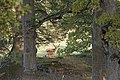 Mariefred - KMB - 16001000409844.jpg