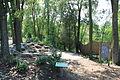 Matthaei Botanical Gardens Amphitheater.JPG