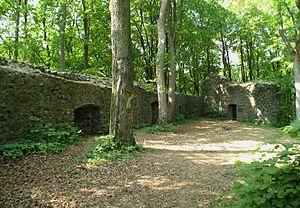 Ruinen der Maienburg