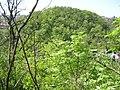 Michle, přes průkop na Tyršův vrch.jpg