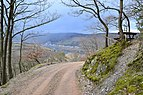 Middle Rhine - view from Burg Sooneck 2.JPG