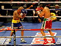 Miguel Cotto vs. Antonio Margarito II, during the fight.jpg