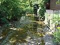 Mill Creek at Erie Zoo upstream.jpg
