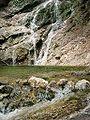 Mirafall-Becken (Oetschergraeben).jpg