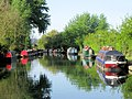Moored Boats to the west of Bridge 130 of the Grand Union Canal - geograph.org.uk - 1467692.jpg