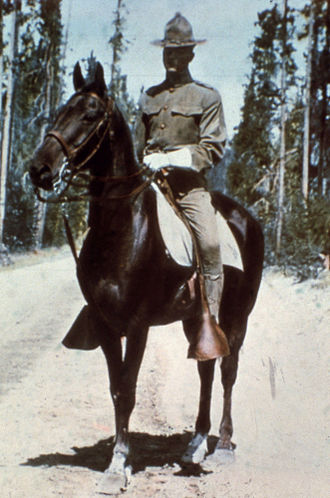 United States Cavalry - Cavalryman circa World War I era