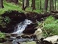 Mountain Stream - panoramio - Atanas Kumbarov.jpg