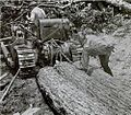 Moving-logs-reed-creek-va.jpg