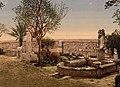 Museum garden Carthage Tunisia.jpg