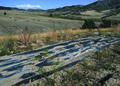 NRCSMT01054 - Montana (4957)(NRCS Photo Gallery).tif