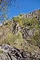 NSG Steinbruch Holzmühle (138).jpg