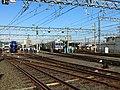 Nankai Railway Festival 2012 02.jpg