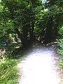 Nant-Cayla, 1203 Genève, Switzerland - panoramio (2).jpg