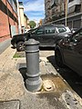Nasone Via Ciro da Urbino, Roma, Italia May 15, 2021 04-14-07 PM.jpeg