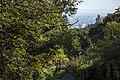National Botanical Garden of Georgia باغ های بوتانیکال در شهر تفلیس گرجستان 19.jpg