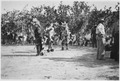Native dancers - NARA - 285227.tif