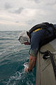 Navy Divers support AirAsia Flight QZ8501 search efforts 150104-N-DC018-195.jpg