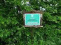 Nekhvoroschi Vol-Volynskyi Volynska-zakaznyk forest-Nekhvoroschi-1.jpg
