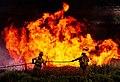 Nevada wildfire (8597688091).jpg