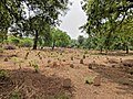 Nicholson (Or Kashmiri Gate) Cemetery Kashmiri Gate Delhi IMG 20180629 114808.jpg