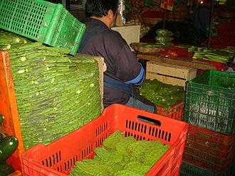 La Merced Market - Nopals for sale at La Merced