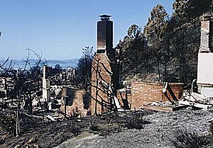 Oakland firestorm of 1991 - Remains of houses destroyed by the fire