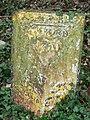 Old Milepost - geograph.org.uk - 1211357.jpg