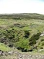 Old shafts - Surrender Ground - geograph.org.uk - 848199.jpg