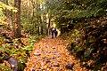 On the trail (1539795902).jpg