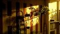 Only Shadows (1860562305).jpg