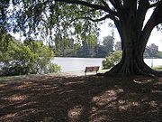 Photograph of a public park in West End, Brisbane
