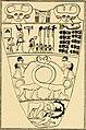 Osiris and the Egyptian resurrection; (1911) (14580042759).jpg