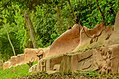 Osun Osogbo forest, river and sacred groove 06.jpg